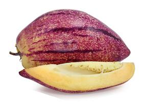 Pepino-Melone